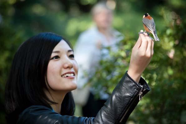 free japanes women